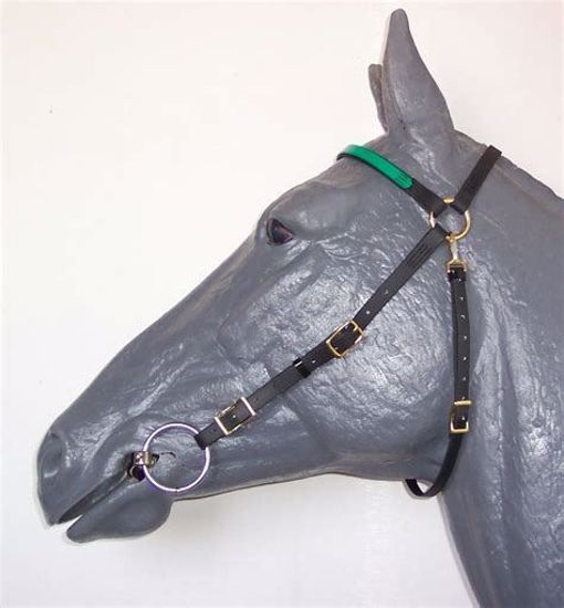 Picture of Trail Bridle