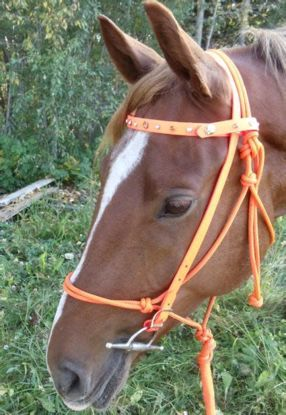 Picture of Bridle Converter