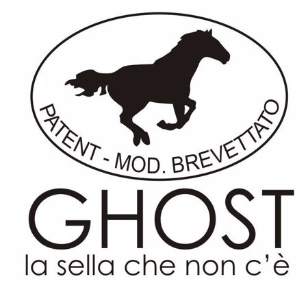 Picture for category Ghost Classic saddles
