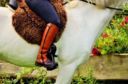 Picture of Tall Boots (Stelvio)